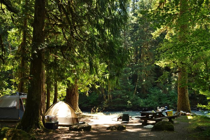 Into the Woods — 9 Locations to Car Camp in Whatcom County