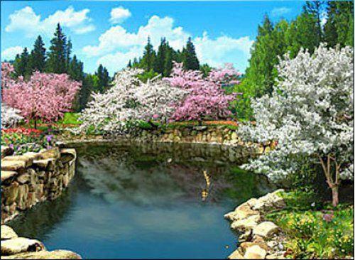 Image Detail For -3D Spring Flowers Wallpaper