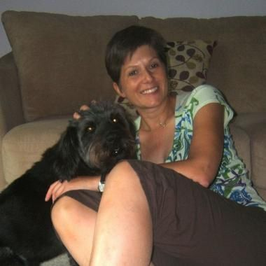 63 Best Pet Sitters And Pet Trainers In Minneapolis Images
