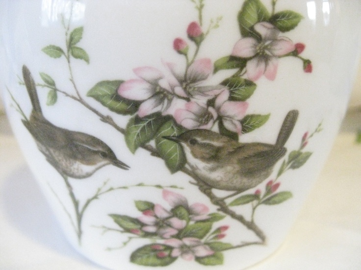 Mint condition vintage Coalport fine bone English china ginger jar, collectable and beautful wren design in the British Birds series. £25.00, via Etsy.