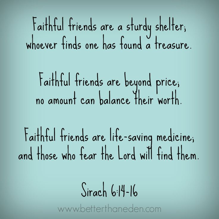 Religious Quotes About Friendship Fascinating Best 25 Friendship Scripture Ideas On Pinterest  Bible Verses On