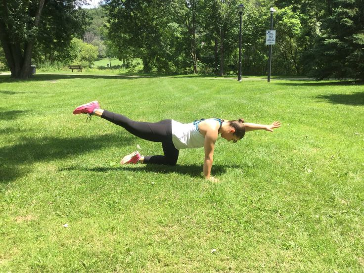 Tutorial: Bird-Dog. Great bodyweight exercise for your core and lower back!