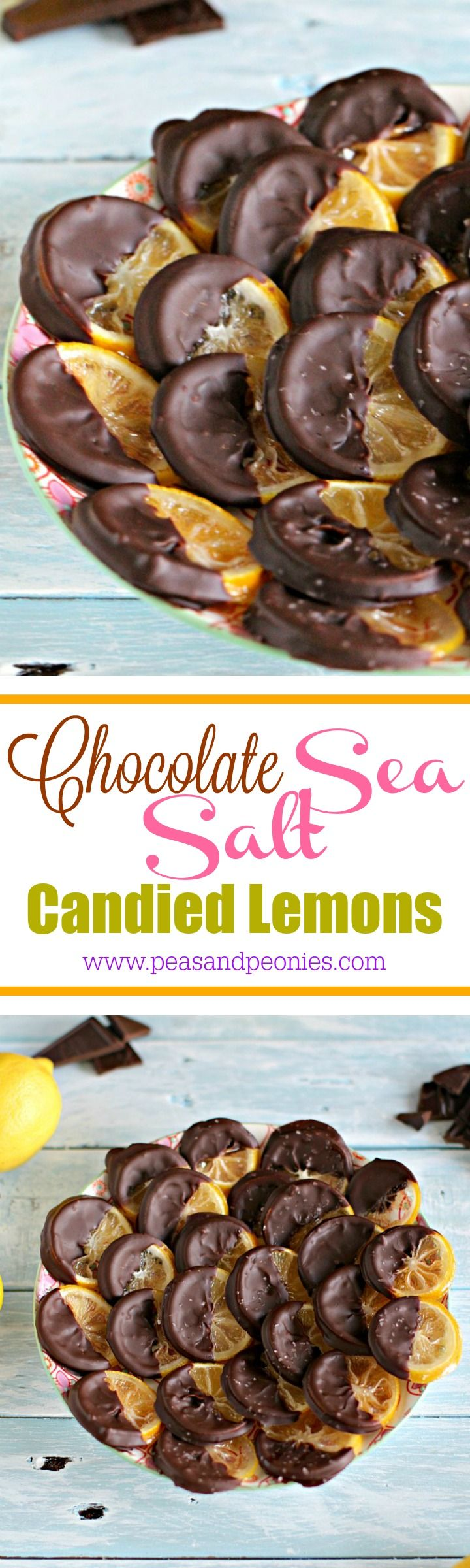 Chocolate Dipped Candied Lemon Rounds - Vegan and gluten free these chocolate dipped candied lemon rounds are sweet, chewy and refreshing, finished with a dash of sea salt for a perfect snack. Peas and Peonies