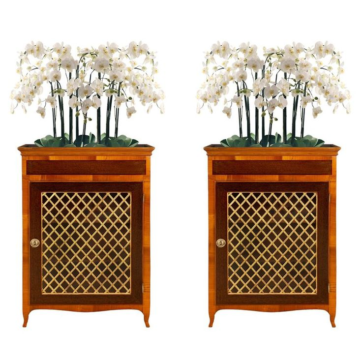 Pair of Italian 19th Century Louis XV St. Walnut and Mahogany Vitrine/ Planters