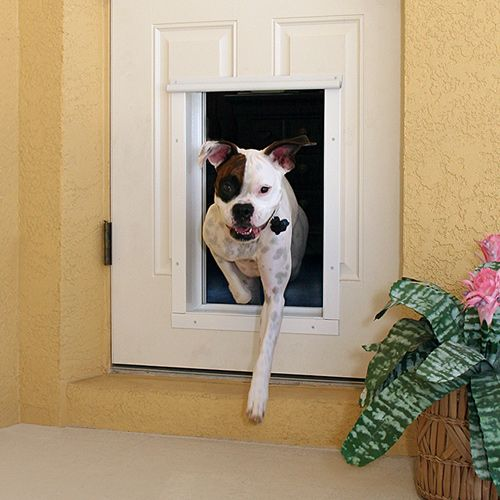 49 best images about dog doors our products on pinterest for Dog door for garage door