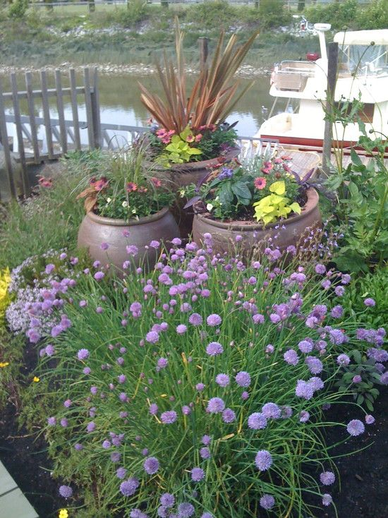 85 best Edible Landscaping images on Pinterest | Edible garden ...