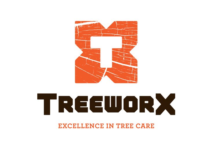 Tree Felling, Tree Stump removal, Leylandii Hedge Removal, Chainsaw Sales, Hedge Trimmer Sales, Brush Cutter Sales Arborist Supplies, Tree Surgery Supplies,