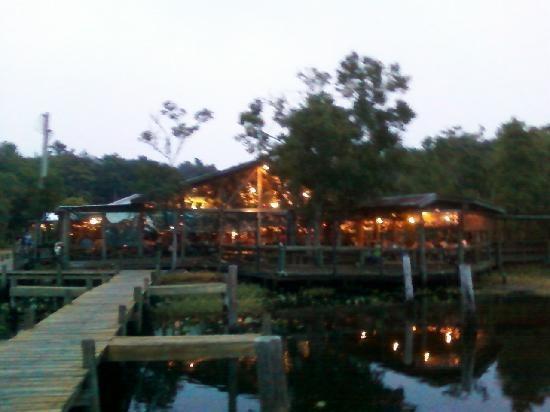 25 trending jacksonville florida ideas on pinterest for Fish camp jacksonville