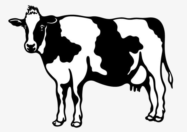بقرة Moose Art Cow Art