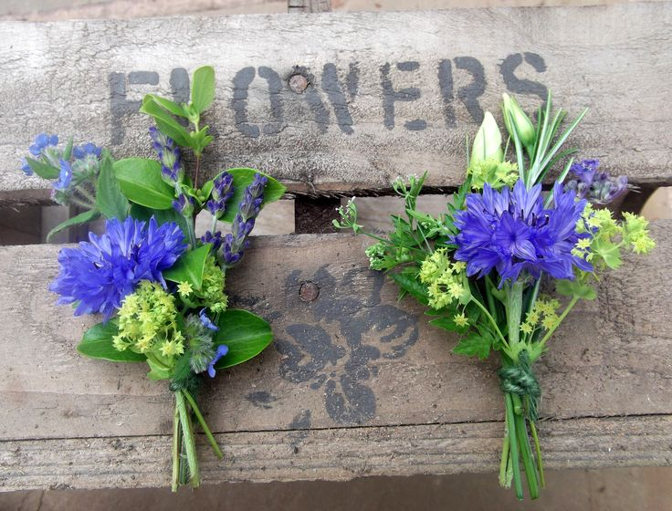 cornflower buttonholes