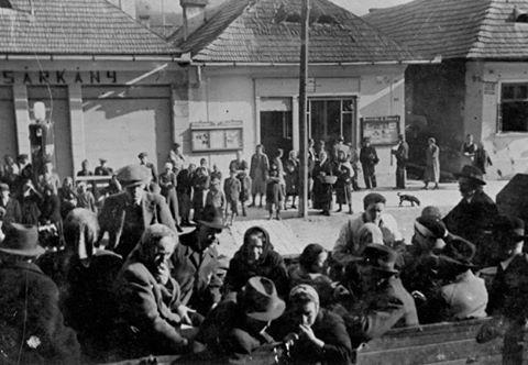 Auschwitz: The Camp of Death