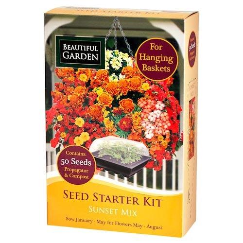 Sunset Mix Seed Starter Kit   Poundland