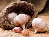 Jak vypěstovat zdravý česnek: termín výsadby, hnojení, moření