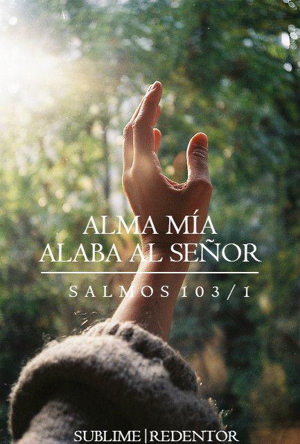 Salmo 103:1-5 Bendice, alma mía, a Jehová, y bendiga todo mi ser su santo nombre. Bendice, alma mía, a Jehová, y no olvides ninguno de sus beneficios. El es quien perdona todas tus iniquidades, El que sana todas tus dolencias; El que rescata del hoyo tu vida, El que te corona de favores y misericordias; El que sacia de bien tu boca de modo que te rejuvenezcas como el águila.♔