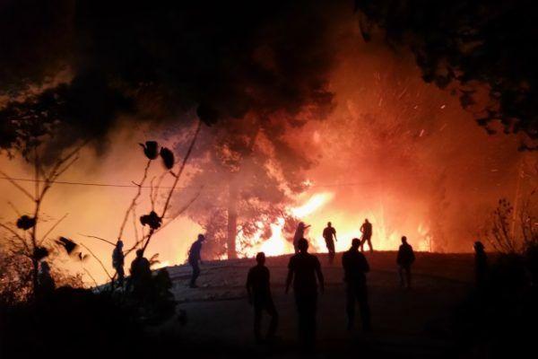 Fire Dolev