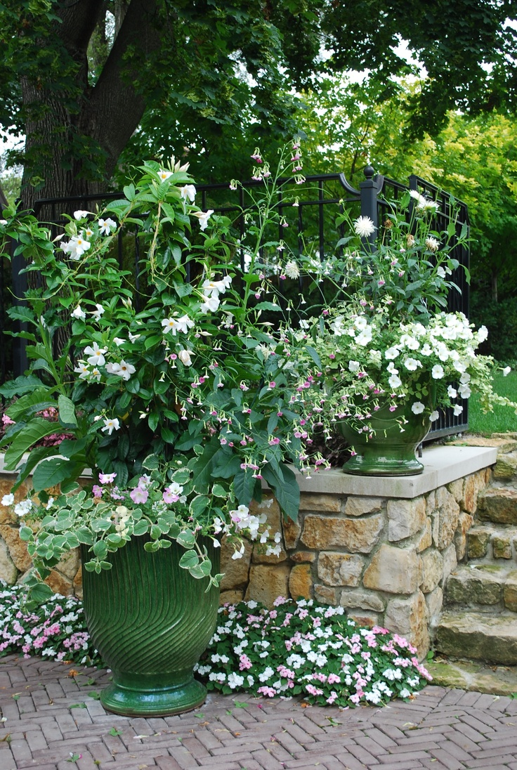 299 Best Container Gardening Images On Pinterest Container Plants