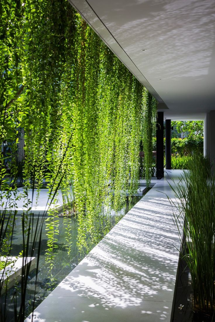 A walkway through hanging gardens