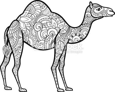 555 best Camel art ideas images on Pinterest Camels Animals and