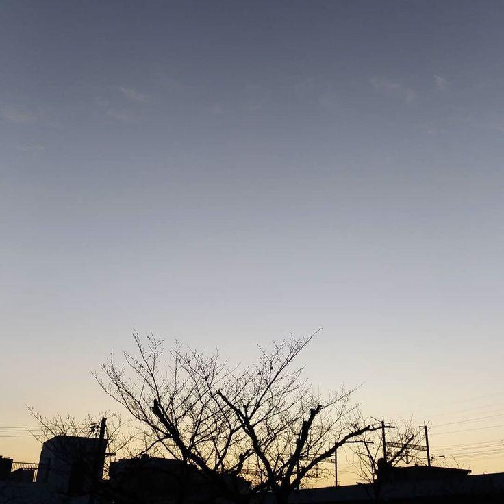 おはようございます今日もいい天気冷え込みました #空 #雲 #sky #cloud #イマソラ #おはよう #goodmorning