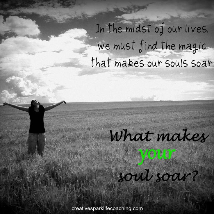 What makes your soul soar? – Creative Spark Life Coaching