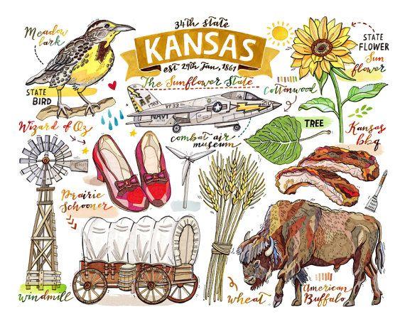 33 Best Loupaper Illustration Images On Pinterest Maps