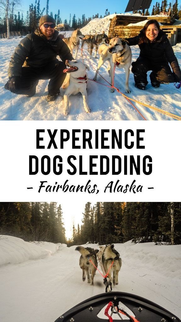 For many years I dreamed about what it would be like to experience Alaska dog sledding at some point in my life. Maybe it was too many Jack London books and film adaptations when I was young or maybe it's something we all secretly long to do, at least once.