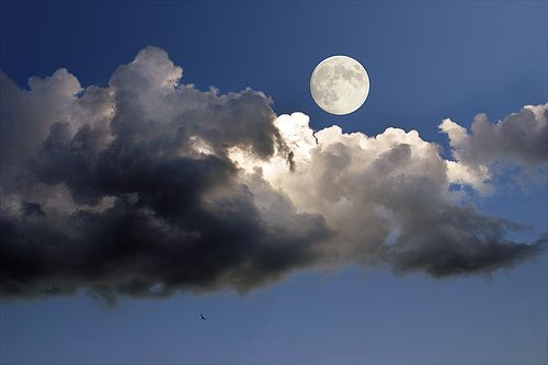 Moon Shadows, Serbia  photo via hydrazine Repinned by Pinterest Pin Queen ♚