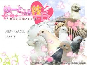 A pigeon dating sim