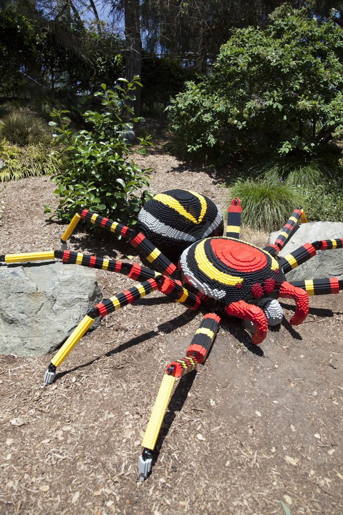 LEGO spider | LEGOLAND California -- Curated by Dragon Cards & Games | 15-1771 cooper road Kelowna B.C. V1Y7T1 | 2508601770