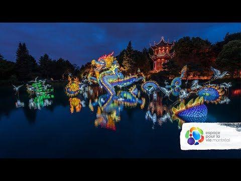 Jardins de lumière 2017 / Gardens of Light 2017 - YouTube