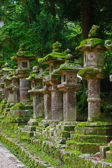 Stone lanterns at Kasuga Taisha Shrine in Nara, Japan (by Wistou). ... it always amazes me how Mother Nature, left to her own devices, can make all things beautiful.