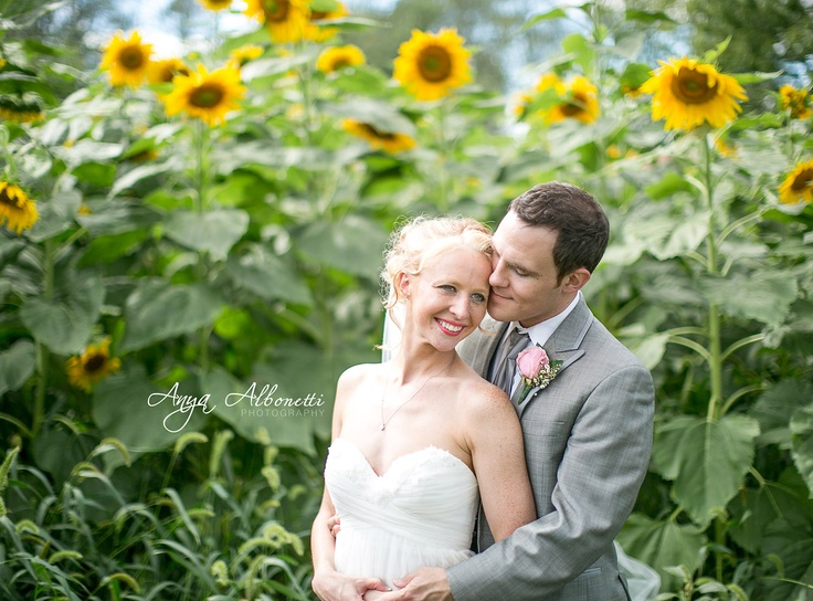 Sunflower fields wedding photography and forts on pinterest