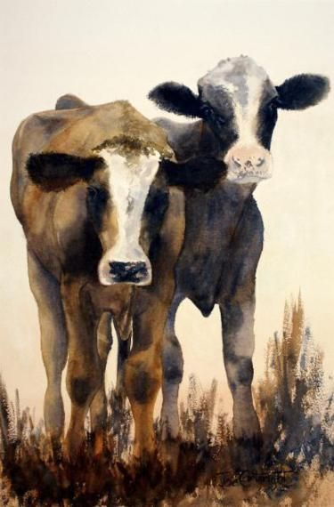 Watercolour Paintings By Australian Artist Joe Cartwright  cows