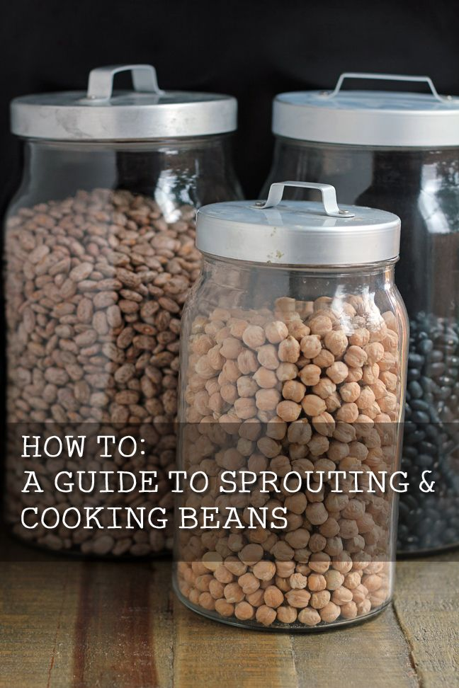 How to Sprout & Cook Beans - sprouting neutralizes the phytic acid in beans and makes them more digestible.