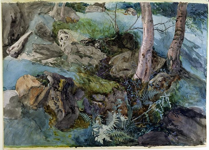 John Ruskin, Rocks and Ferns in a Wood at Crossmount, Perthshire 1847. (Courtesy of Abbot Hall Art Gallery, Lakeland Arts Trust, Kendal, Cumbria, UK. Reproduced by courtesy of Abbot Hall Art Gallery).