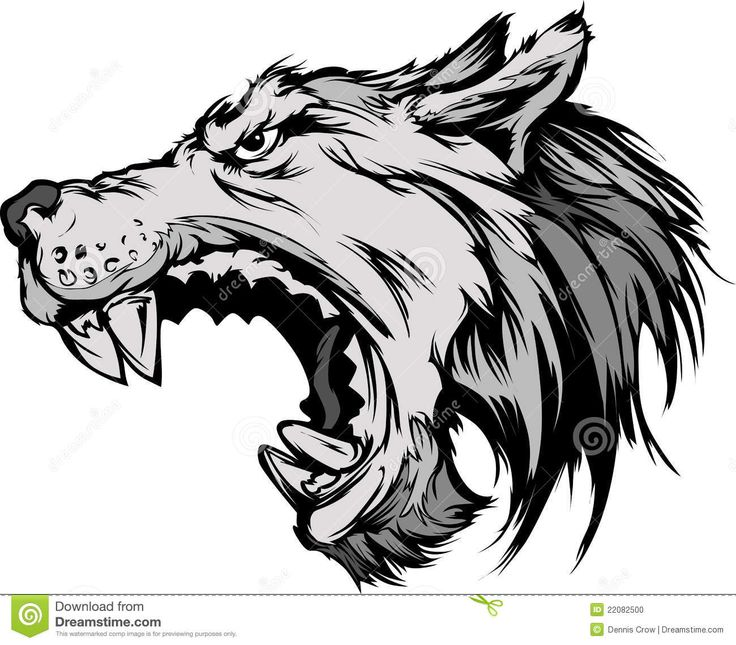 Wolf Mascot Head Cartoon Wolf Mascot Head Cartoon - Download From Over 38 Million High Quality Stock Photos, Images, Vectors. Sign up for FREE today. Image: 22082500
