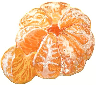How to Draw an Orange Fruit
