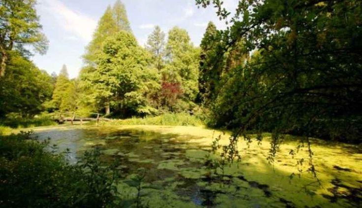 Parcul dendrologic din Amara este cel mai mare parc de acest fel din sud-estul Romaniei si ocupa un spatiu de 64 hectare dispune de un potential turistic apreciabil si completeaza oferta turistica balneara a statiunii Amara. Parcul dendrologic din Amara poate fi considerat un adevarat rai de verdeata.