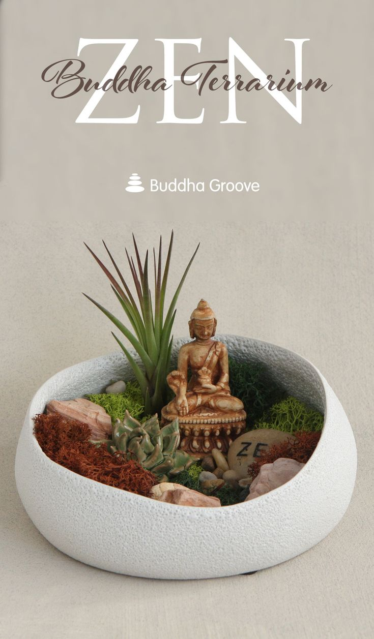 Buddha's Garden Moss and Air Plant Terrarium