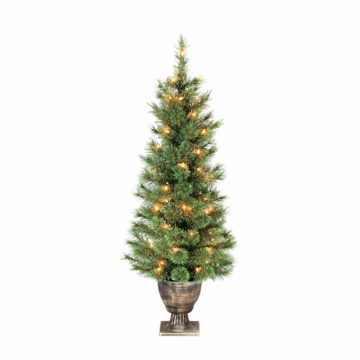 Greenfields Christmas Tree Man Bowo999321ac5 Potted Prelit Cashmere Tree