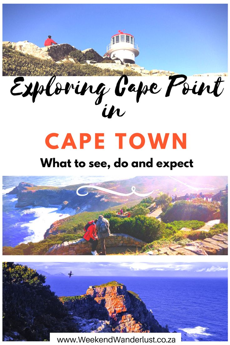 Exploring the Cape Point in Cape Town. What to see, do and expect from the Cape Point Nature Reserve.