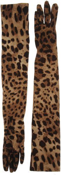 Dolce & Gabbana Gloves ♥✤ | Keep the Glamour | BeStayBeautiful