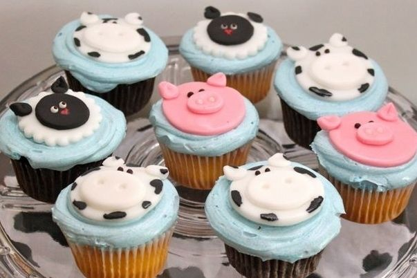 41 Farm Themed Birthday Parties - Spaceships and Laser Beams