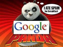 Google panda update in Hindi/Urdu tutorial