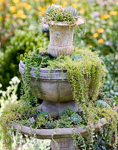vignette of plants spilling from an urn and pot.: Modern Gardens, Farms Gardens, Water Fountain, Idea, Succulents Fountain, Succulent Gardens, Birds Bath, Gardens Design, Interiors Gardens