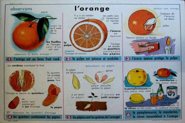 ancienne affiche d 39 cole affiche scolaire vintage mdi l 39 orange le verre http www. Black Bedroom Furniture Sets. Home Design Ideas