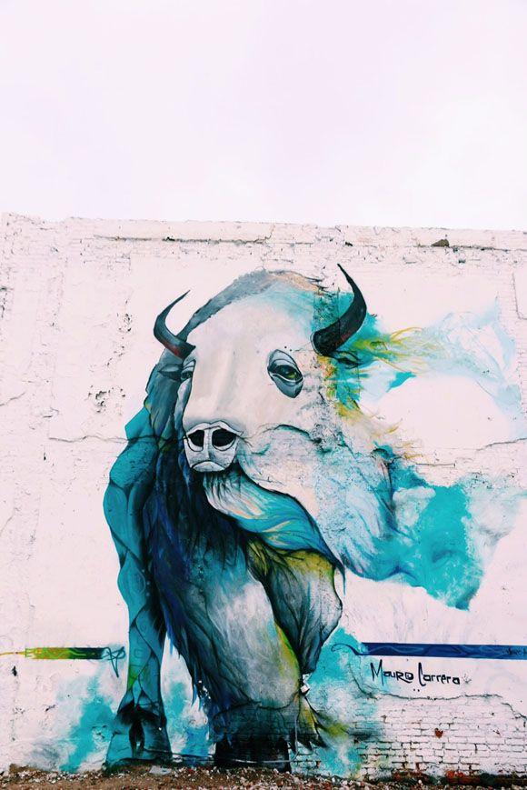 buffalo mural in Philadelphia, (Northern Liberties at 2nd Street and Poplar)