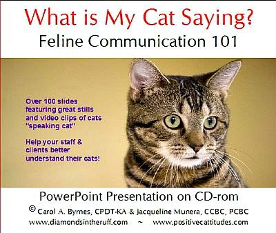 """Cats are often misunderstood so, why not learn what your cat is trying to tell you? The """"What Is My Cat Saying?"""" e-Download is a great learning tool for business owners, trainers, and cat owners for learning about what your body language and your cats body language is saying. Not to mention, you can take it anywhere you go! Get your download today!"""