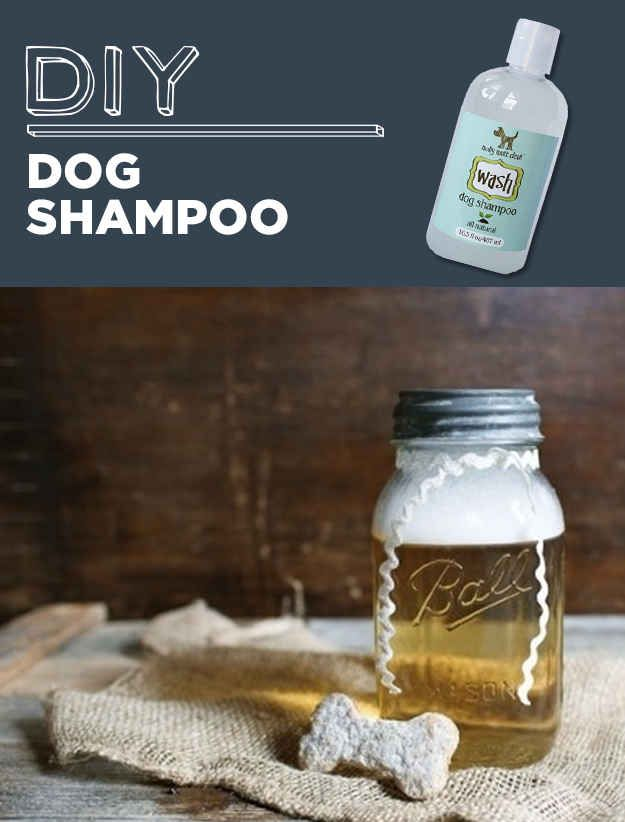 DIY Dog Shampoo | 31 Household Products You'll Never Have To Buy Again