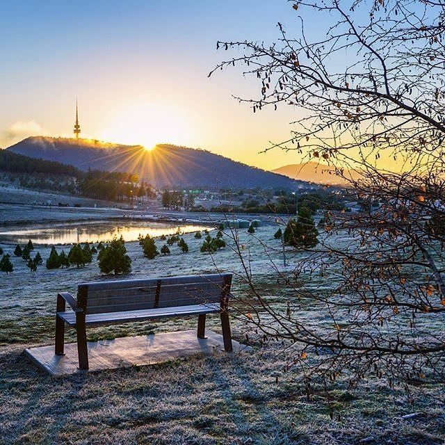 "Care to take a seat? This stunning photo captured by  @carolelvin shows a ""clear and crunchy"" winter morning at the National Arboretum Canberra, which is home to almost 100 different collections of rare, endangered and symbolic trees from around Australia and the world. #visitcanberra #onegoodthingafteranother"